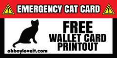 Oh Boy Love It Emergency Cat  Wallet Card Free Printout