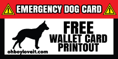 Oh Boy Love It Emergency Dog Wallet Card Free Printout